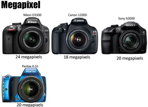 Best Entry Level Dslr Best Entry Level Dslr Of 2014 Comparison Review