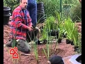 Gartenteich Gestalten Bilder : gartenteich anlegen so geht s bauhaus tv youtube ~ Whattoseeinmadrid.com Haus und Dekorationen
