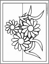 Daisies Daisy sketch template
