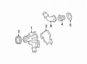 Ford Thunderbird Gasket  Thermostat  Engine  Coolant  3 8