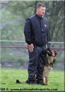 156 best ipo and schutzhund images pictures of dogs