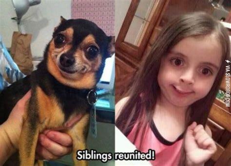 Little Girl Face Meme - she found her spirit animal