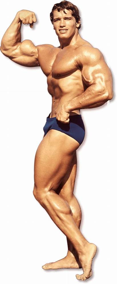 Arnold Bodybuilding Bodybuilder Schwarzenegger Transparent Poses Background