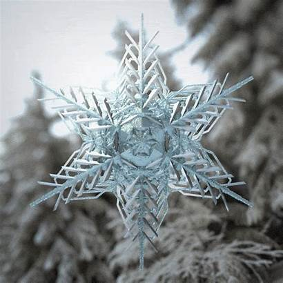 Snowflake Snow Loop Gifs Winter Giphy Xponentialdesign