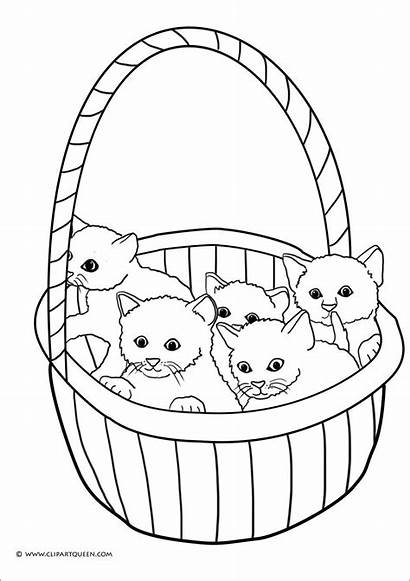 Kitten Coloring Pages Preschoolers Coloringbay