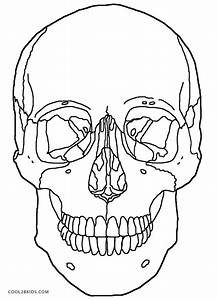 anatomy and physiology coloring pages free - printable skulls coloring pages for kids cool2bkids