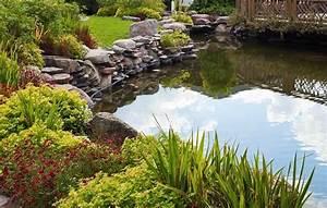 Pflanzen Rund Um Den Gartenteich : oczko wodne w ogrodzie ~ Whattoseeinmadrid.com Haus und Dekorationen