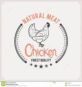 Butcher Shop Label Template  Chicken Cuts Diagram Stock
