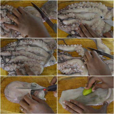 Comment Cuisiner Le Poulpe Frais by Miss Nat 239 Aa Comment Nettoyer Un Poulpe Frais Blog