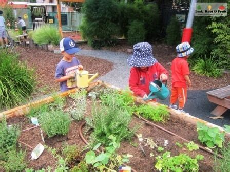community preschool and nursery gardiner preschool community herb garden leaf root 327