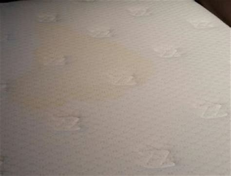 clean urine from mattress how to clean your mattress from urine homeremedies