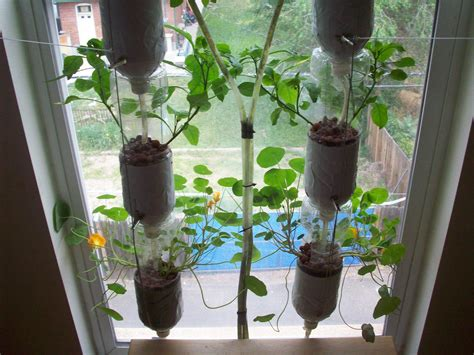 Window Sill Hydroponics by Start Your Own Window Farm Rabble Ca