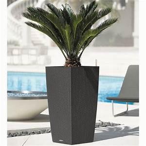 Plante D Extérieur En Pot : pot lechuza cubico cottage l30 h56 cm granit plantes et ~ Dailycaller-alerts.com Idées de Décoration