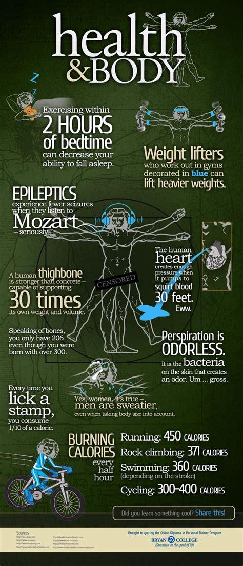 images  crossfit infographics  pinterest