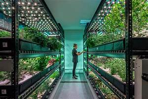Can Vertical Farming Disrupt the Agriculture Industry? - Eater