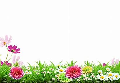 Spring Transparent Poster Flowers Flower Fleurs Clipart