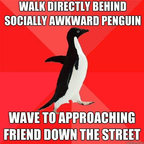 Penguin Memes - image 286412 socially awesome penguin know your meme
