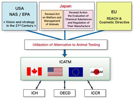 5 alternative methods to storing alternatives to animal testing wikipedia