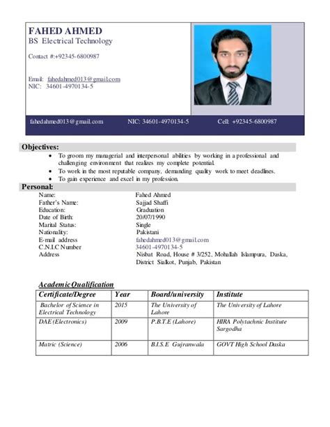 Curriculum Vitae Template Docx by Professional Cv Template Docx