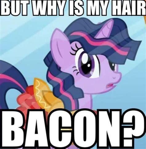 Mlp Funny Memes - 24 best mlp memes images on pinterest mlp comics mlp memes and ponies