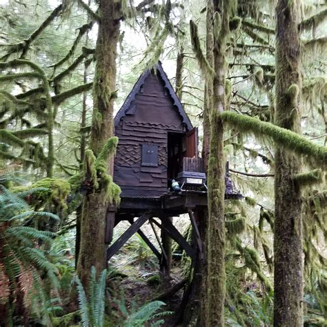 child pornography shrine   fairy tree house