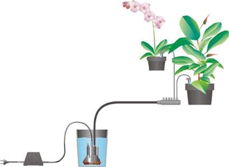 choisir syst 232 me d arrosage de vacances pour ses plantes d int 233 rieur le magazine gamm vert