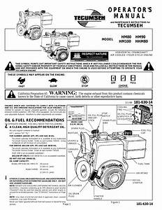 Tecumseh Hm80 Wiring Diagram