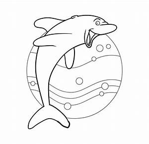 Dolphin Template