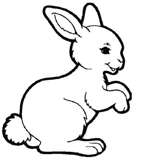 rabbit coloring pages coloringpagescom