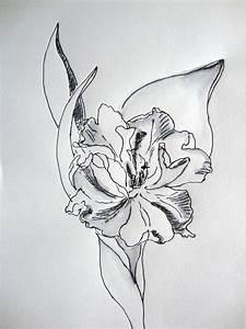 Ideen Zum Zeichnen : blume zeichnen mit martina wald seite 24 ~ Yasmunasinghe.com Haus und Dekorationen