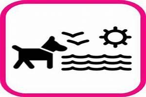 übergabe Einer Mietwohnung : wir wollen unseren hundestrand zur ck keine leinenpflicht ~ Lizthompson.info Haus und Dekorationen