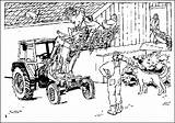 Bauernhof Boerderij Kleurplaten Ausmalbilder Ranch Coloring Malvorlagen Gifs Farm Coloriages Farma Granja Kleurplaat Dibujos Fazenda Colorare Fattoria Bild Animierte Gify sketch template