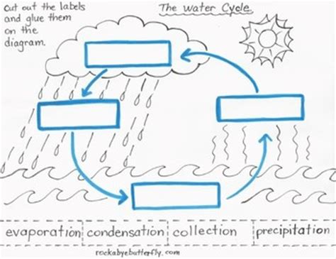 The Water Cycle Diagram Pdf by The Water Cycle Lesson Plan With Printables By