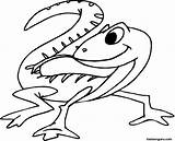 Gecko Coloring Pages Cartoon Print Monkey sketch template