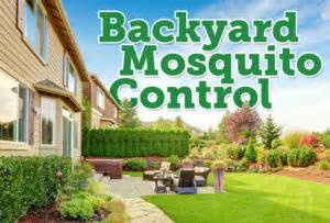 Backyard Mosquito Reviews by The Best Mosquito Granules For Backyards Mosquito