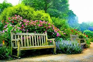 Benches in Spring Park 4k Ultra HD Wallpaper and ...