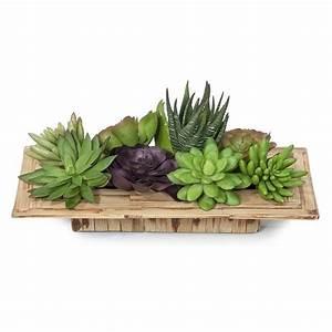 Plantas artificiales,crasas o suculentas http://www lallimona com/botigaonline/plantas