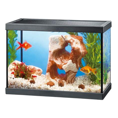 coffre a jouet lilliputien aquarium 100l pas cher 28 images aquarium 100l pas cher angers kingdomexpression website