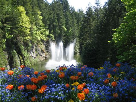 Free Garden Image by Free Butchart Gardens Stock Photo Freeimages