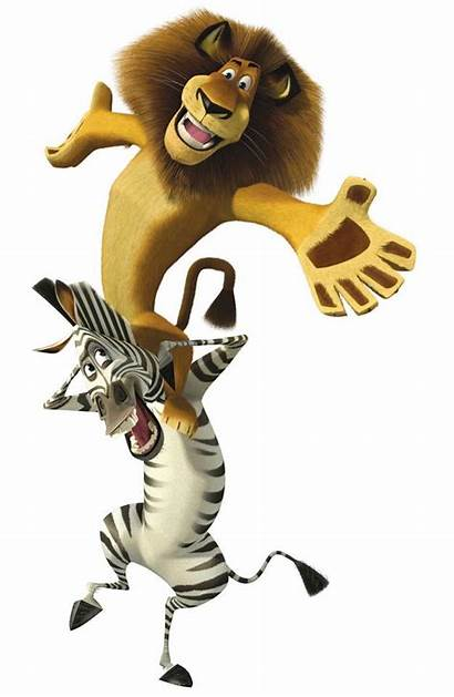 Marty Alex Madagascar 2005 Characters Film Cartoon
