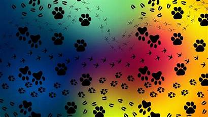 Paw Wallpapers Prints Pattern Dog Paws Digital