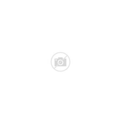 Fleur Lis Symbol Lily 3d Royalty Golden