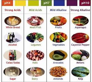 List of Alkaline Foods - The pH Balanced Diet - In5D ...