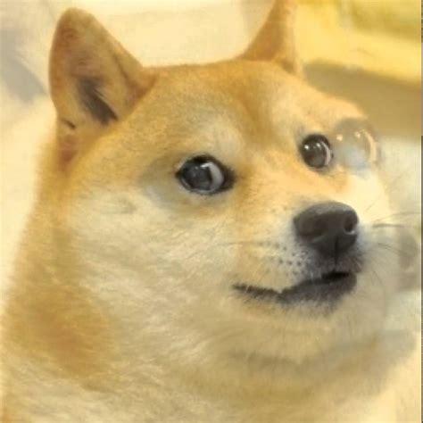 Youtube Doge Meme - epic doge youtube