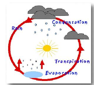 Water Cycle Diagram Earthguide by Water Cycle