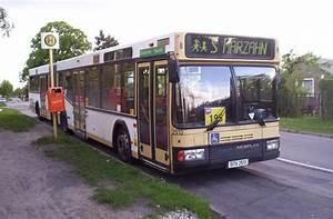 Bus Berlin Kassel : neoplan gelenkbus der bvg auf der linie 195 in berlin mahlsdorf foto bild bus nahverkehr ~ Markanthonyermac.com Haus und Dekorationen