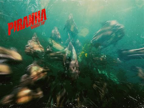 piranha  horror movies wallpaper  fanpop