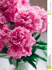 Beau Bouquet De Fleur : beau bouquet des pivoines roses drapeau des fleurs ~ Dallasstarsshop.com Idées de Décoration