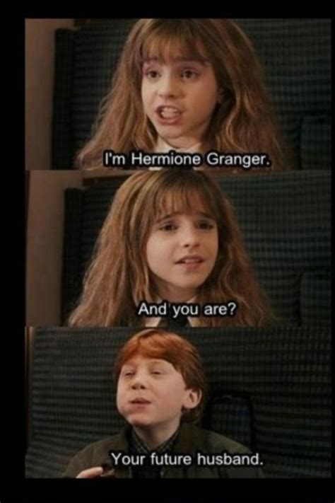 Hermione Meme - harry potter funny meme about ron weasley and hermione granger kings cross 9 3 4 train cabin
