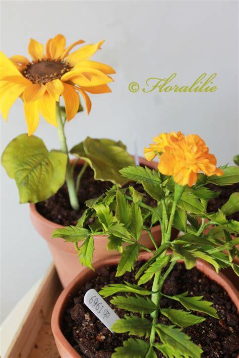 edible flower pots cakecentralcom